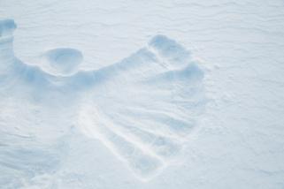 snow-angel-1443346000ies